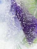 Органическая фиолетовая зеленая абстракция Стоковые Изображения RF