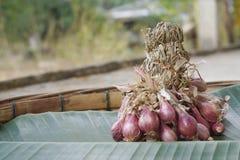 Органическая Vegetable тайская еда Стоковая Фотография