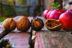 Органические гайки и яблоки Стоковое фото RF