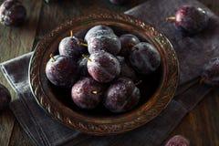 Органические зрелые фиолетовые сливы чернослива Стоковые Изображения