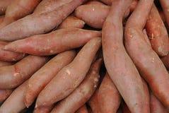 органические картошки сладостные Стоковое Изображение RF