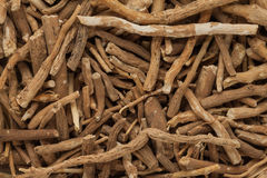 Органические корни Ashwagandha (somnifera Withania) стоковые изображения rf
