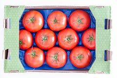 Органические красные томаты на подносе в коробке Стоковые Изображения