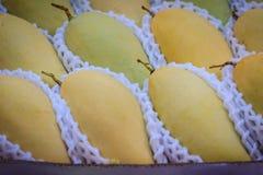Органические манго Mai Nam Dok для продажи на рынке плодоовощ Na Стоковые Изображения RF