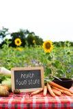 Органические овощи на таблице Стоковые Фото