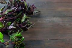 Органические свежие sprigs базилика на деревянном столе Стоковые Изображения RF