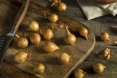 Органические сырцовые желтые луки жемчуга Стоковые Изображения