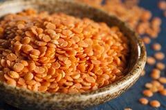 Органические сырцовые красные чечевицы Стоковая Фотография