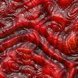органические ткани Стоковые Изображения RF