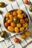 Органические томаты вишни Heirloom стоковые фотографии rf