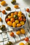 Органические томаты вишни Heirloom стоковая фотография