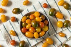 Органические томаты вишни Heirloom стоковые изображения