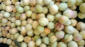 Органический абрикос Стоковая Фотография