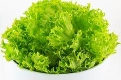 Органический зеленый салат в шаре изолированном на белой предпосылке Стоковые Фото