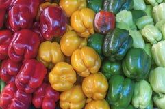 Органический здоровый свежий сад нескольк красочная паприка на рынке Стоковая Фотография
