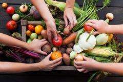 Органический ингредиент фермы, свежая вегетарианская еда рынка стоковое фото
