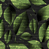 Органический и естественный Стоковые Фотографии RF