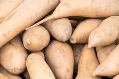 Органический овощ на рынке фермеров Стоковая Фотография RF