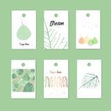 Органический подарок стиля маркирует и карточки с листьями Illu вектора запаса Стоковые Изображения RF