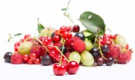 Органический плодоовощ Стоковое фото RF