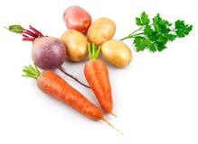 Органический сбор натюрморта еды vegan Стоковые Изображения