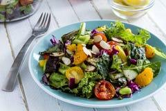 Органический супер салат вегетарианца еды стоковые фотографии rf