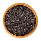 Органический черный рис в деревянном шаре над белизной Стоковая Фотография