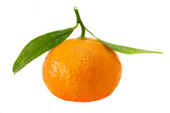 органический tangerine стоковые изображения
