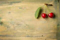 2 органических вишни на стержне с зелеными листьями Стоковое Фото