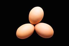 3 органических коричневых яичка Стоковые Фото