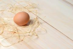 Органическое запятнанное коричневое яичко Стоковое Изображение