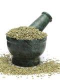 Органическое индийское семя фенхеля & x28; Vulgare& x29 фенхеля; на мраморном пестике Стоковые Фотографии RF