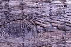 Органическое тимберса битника деревянной структуры текстуры старое коричневое естественное грубое используемое естественное стоковое фото rf