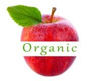 Органическое торжественное яблоко с лист стоковое фото rf