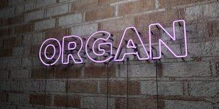 ОРГАН - Накаляя неоновая вывеска на стене каменной кладки - 3D представило иллюстрацию неизрасходованного запаса королевской влас иллюстрация вектора