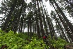 Орегон 2013 Enduro Стоковая Фотография