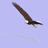 орел большой иллюстрация штока