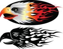орел 5 иллюстрация штока