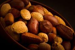 Ореховая закуска Стоковые Фотографии RF