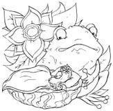 ореховыйая скорлупа девушки смещая жаба Иллюстрация вектора