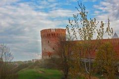 Орел башни Стоковые Фотографии RF