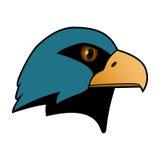 Орел Голова хищной птицы Стоковое фото RF