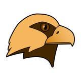 Орел Голова хищной птицы Стоковые Изображения