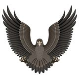 Орел на белой предпосылке Стоковые Фотографии RF