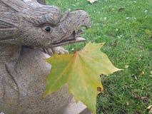Орел с лист Стоковое Изображение RF