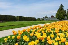 Орнаментальный парк с тюльпанами Стоковые Фотографии RF