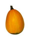 орнаментальный gourd 01 Стоковые Фото