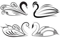 Орнаментальная иллюстрация лебедя Стоковое Изображение RF