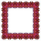 Орнаментальная красочная рамка Стоковое Изображение RF