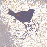 Орнаментальная птица на предпосылке grunge Стоковые Фото